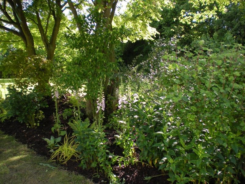 garden-makover-folder-081